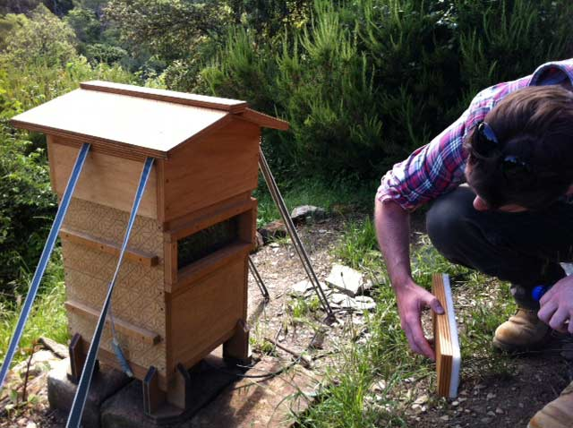 Open Source Beehive Project